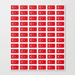 flag of turkey -turkey,Turkish,Türkiye,Turks,Kurds,ottoman,istanbul,constantinople. Canvas Print