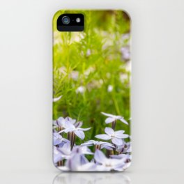 Sun-kissed Meadows with White Star Flowers iPhone Case
