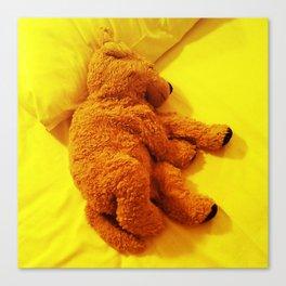 Love is... Teddy dog Canvas Print