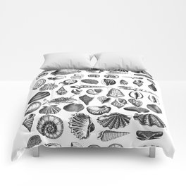 Vintage Sea Shell Drawing Black And White Comforters