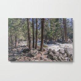 Yosemite Park Sierra Nevada California Metal Print