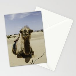 Gobi Camel Stationery Cards