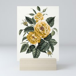 Yellow Roses Mini Art Print