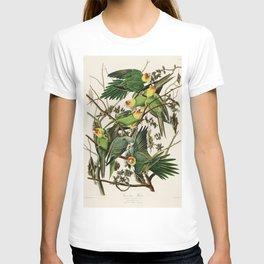 Carolina Parrot - John James Audubon's Birds of America Print T-shirt