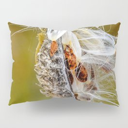 Time to Seed by Teresa Thompson Pillow Sham