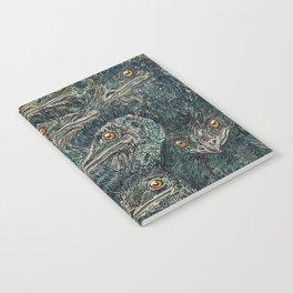 Emus Notebook