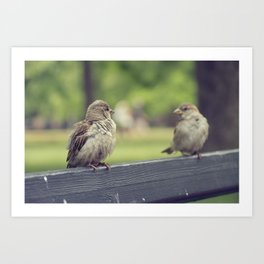 Two is better than one Art Print