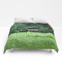 Caught Unaware (Deer) Comforters