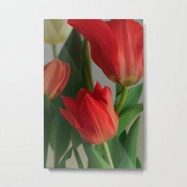 Crimson Red Tulip Flowers at Home Metal Print
