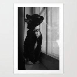 Kitty Art Print