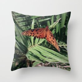 Beautiful Butterfly  Throw Pillow