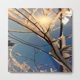 Sylvan Ice Tree Metal Print