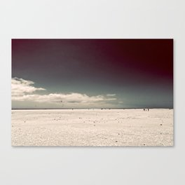 Walking On Canvas Print