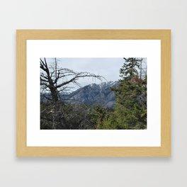 Rugged Beauty 1 Framed Art Print