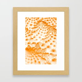 Orange Romanesco Rapture Framed Art Print