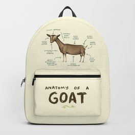 Anatomy of a Goat Backpack