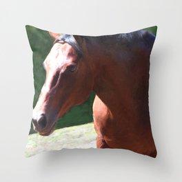 Priceless Mischief Throw Pillow