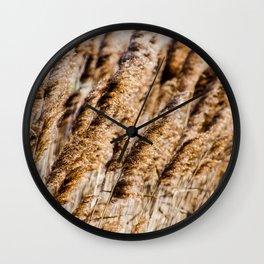 Brown Reeds Wall Clock