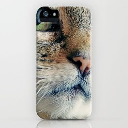 My Sweet Lilly the Cat iPhone Case