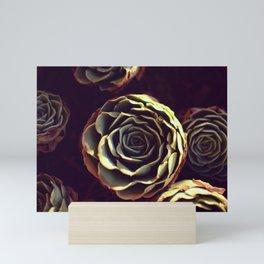 Cabbage rose shaped succulents - Farmhouse style Mini Art Print