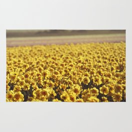 Narcissus field #2 Rug