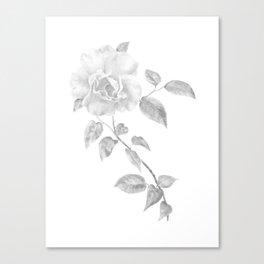Climbing Rose II Canvas Print