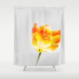 Spring Flame Shower Curtain