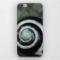 spiral iPhone & iPod Skin