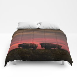 Two American Buffalo Bison at Sunset Comforters