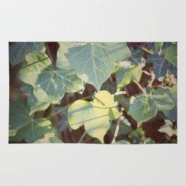 Trailing Ivy #2 Rug