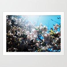 summer solstice 9 Art Print