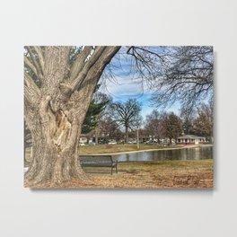 Heart Tree at Lagoon Metal Print