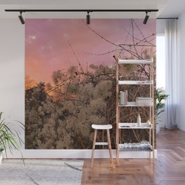 Winter Sunset And Clematis Vines Wall Mural