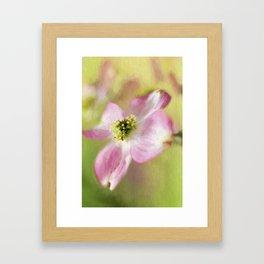 Pastel Spring Framed Art Print