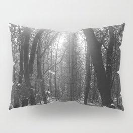 Forest Sun Pillow Sham