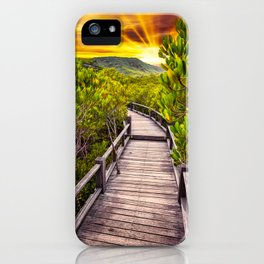 Mangrove Forest Sunset iPhone Case