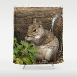 squirrel woodland animal Shower Curtain