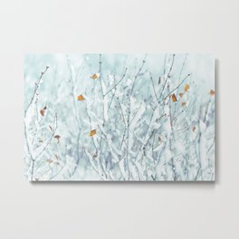Frosty Twigs and Leaves Metal Print