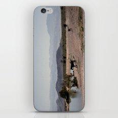 The Waterhole iPhone & iPod Skin
