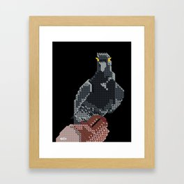 Pigeon Hand Framed Art Print