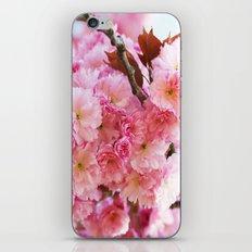 Cherry Blossom dream iPhone & iPod Skin