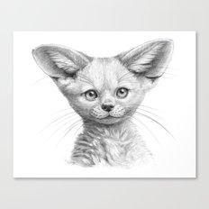 Fennec cub G107 Canvas Print