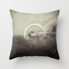 Controlled Burn - B Throw Pillow