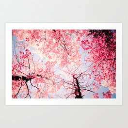 Color Drama I Art Print