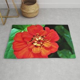 The Red Zinnia Rug