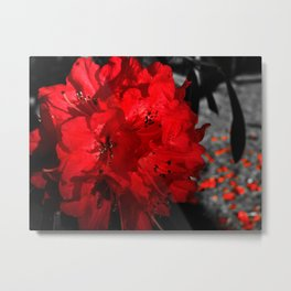 Bloom of Betrayal Metal Print