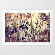 Autumn Sun in Ohio Art Print
