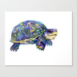 Turtle children artwork illustration blue purple teal animal art Canvas Print