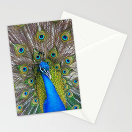 The Peacock fancy feathers dress Stationery Cards