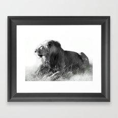 Lion in the Sunshine Framed Art Print